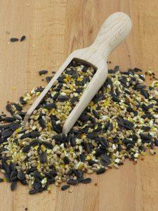 Everyday Mix bird food for feeding wild birds, full of sunflower seeds