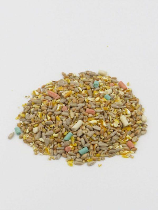 Husk Free Songbird Mix, without raisins. For feeding wild birds