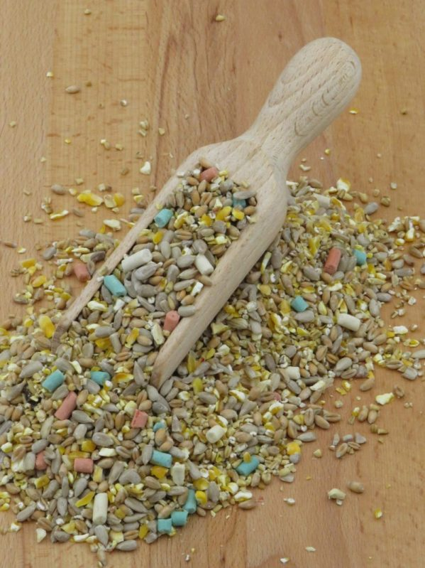 Husk Free Songbird Mix, without raisins, for feeding wild birds. Full of sunflower hearts and three flavours of suet pellet.
