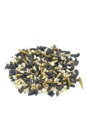 Super Inest Mix for feeding wild birds. With sunflower seeds and calciworms, high in protein and energy
