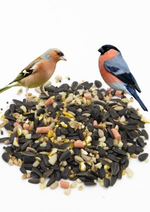 Super Suet Mix wild bird food high energy with finches