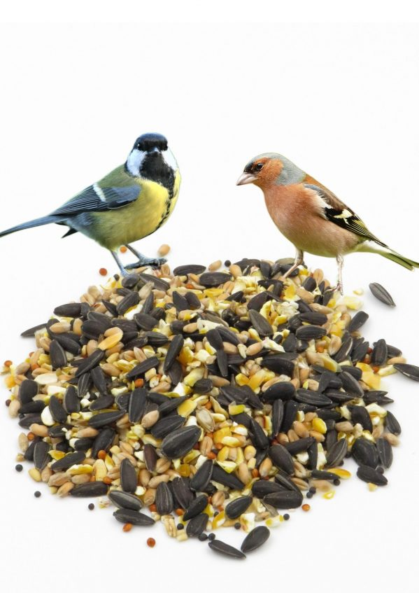 Everyday Mix Wild Bird Food with Great Tit and Chaffinch