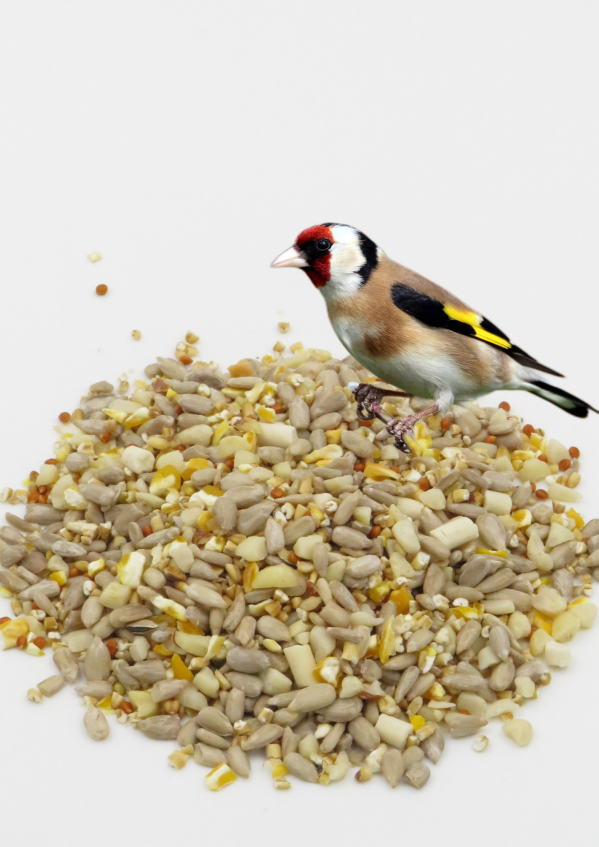 Max energy Mix wild bird food with goldfinch