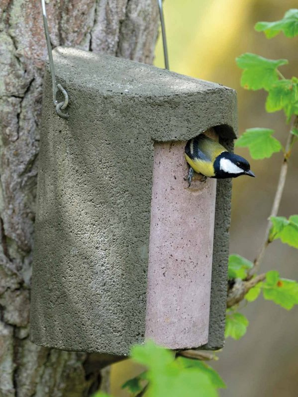 The Official, Woodcrete nest box fro wild birds. Green option hanging in tree with great tit leaving the nest