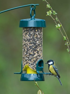 Big Easy wild bird seed feeder. Green and yellow, 2 port with great tit sitting on perch.