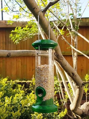 Red bard seed feeder for feeding wild birds hanging in tree with husk free songbird mix