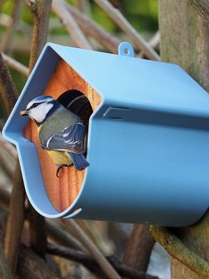 Evie wild bird feeder, attached to tree trunk. Blue tit feeding from peanut butter jar inside.