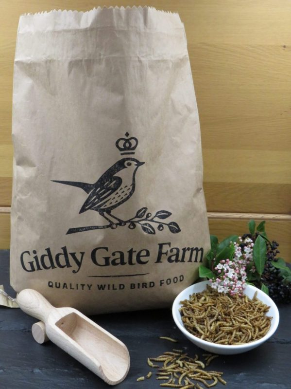 Dried Mealworms for wild bird feeding. Recyclable paper packaging
