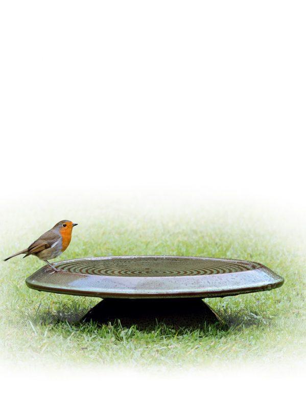 Inspira ceramic glaze bird bath sitting on lawn with robin