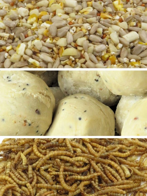 Seasonal bundle for wild bird feeding in the spring and summer. Max energy Mix, premium fat balls and dried mealworms
