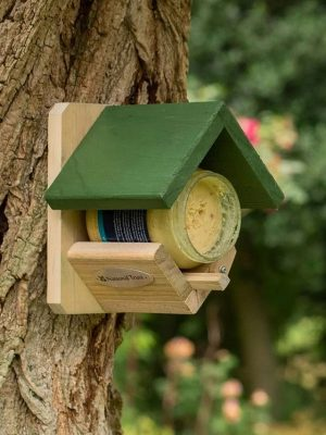 National Trust Dublin Peanut Butter Feeder for wild birds on a tree