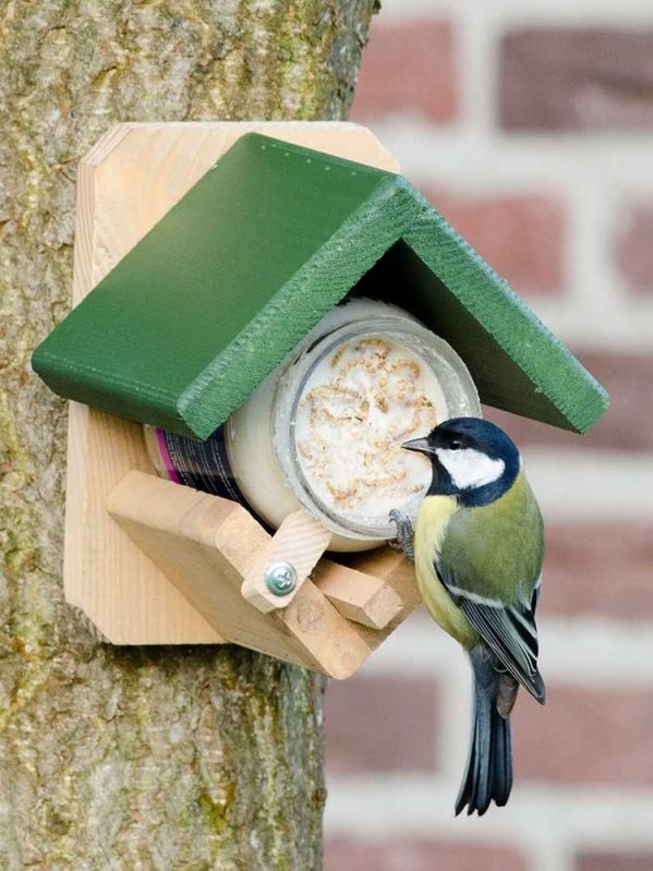 National Trust Peanut Butter Feder with Great Tit Feeding