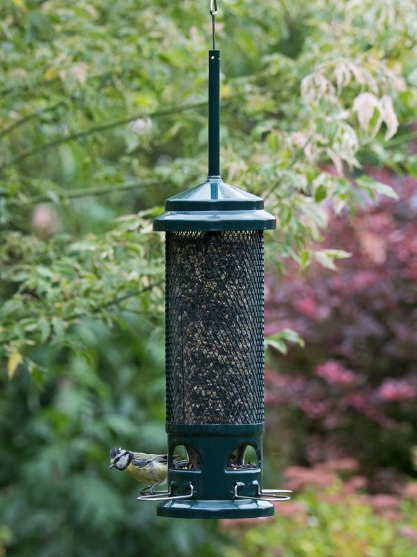 Squirrel buster, squirrel proof wild bird feeder for seed hanging in a garden