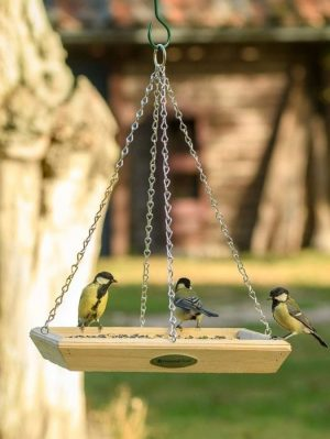 National Trust Hanging wild bird feeder for feeding wild birds. 3 great tits sitting ontop