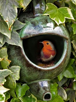 Robin Teapot nester in leaves with a robin sitting inside